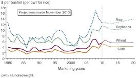 Meat consumption in China per capita