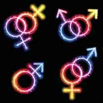 Transgender vector