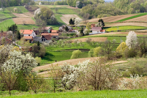 Rural areas in the Eur...
