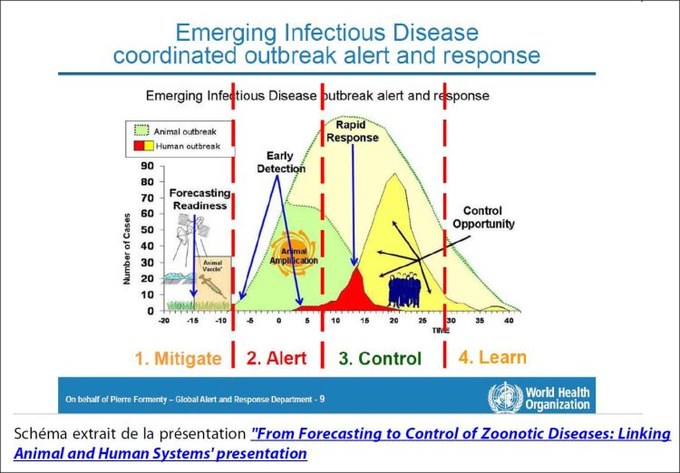 Emerging Infectious Diseases coordinated outbreak alert and response