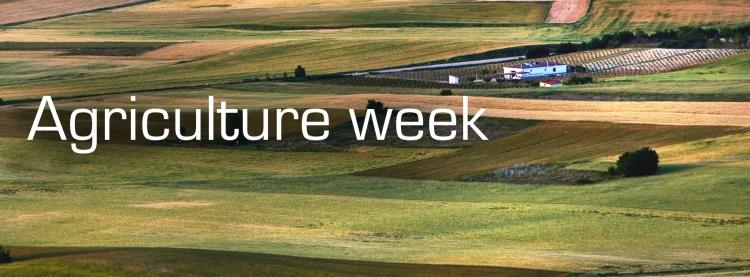 In Focus: Agriculture