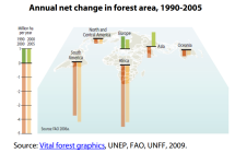 Annual net change in forest area in the world 1990-2005