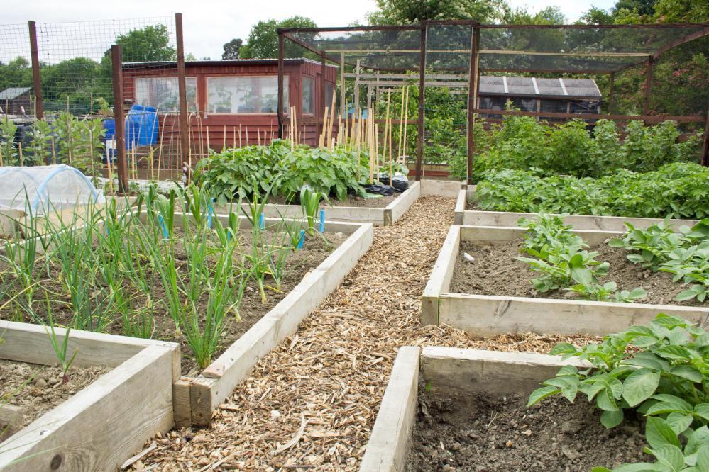 Building Small Garden Beds