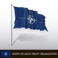 CFSP/CSDP: Outcome of the NATO Summit 2014
