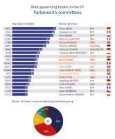 Main governing bodies in the EP - Parliament's committees