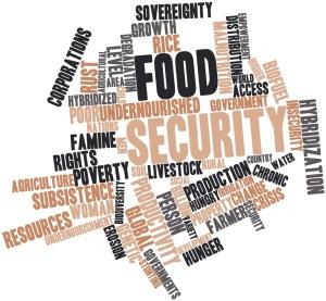 Food security tagcloud