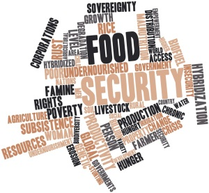 Food security tagcloud