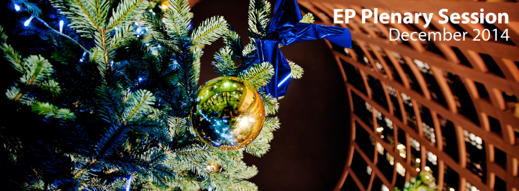 EP Plenary December2014 (2)