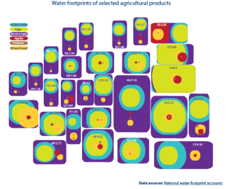 Water footprints of selected agricultural products