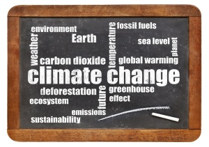 climate change word cloud on blackboard