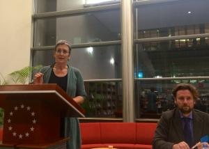 Ulrike Lunacek, Vice-President