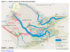 Water resources in the Aral Sea Basin