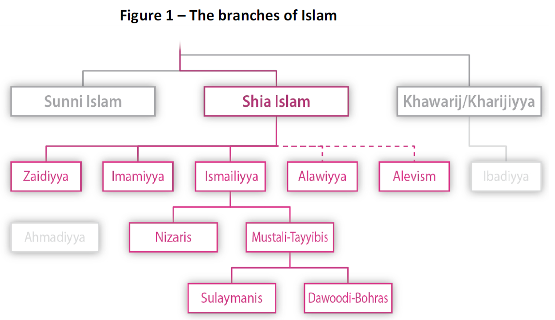 Sunni and shiite difference
