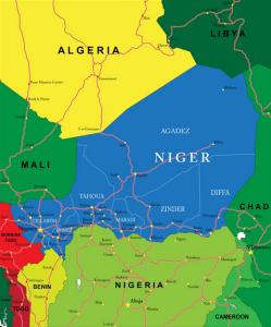 Niger: paysage politique avant les élections