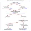 Optimal asylum procedure based on applicable EU rules
