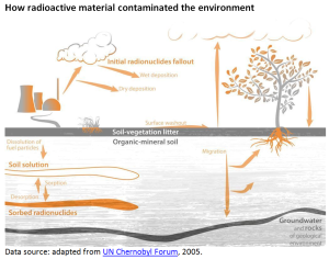 How radioactive material contaminated the environment