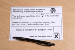 Referendum on the UK's membership of the EU - Postal Vote