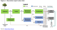 Figure 2 – Shea butter export value chain