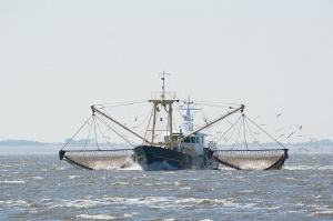 fishing boat on Dutch wadden sea