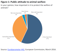 Public attitude to animal welfare