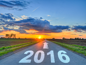 2016: A Year of Shifts and Shocks