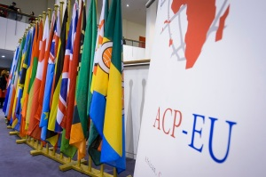 The EU-ACP negotiations: process of chaos and order