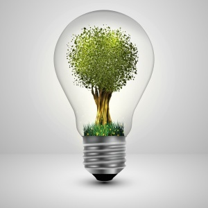 Tree in a light bulb ecology concept, Vector illustration.