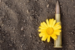 7.62mm bullet and ammunition shell with a yellow flower of peace resting on a dusty dirty background. Copy space area for design text.
