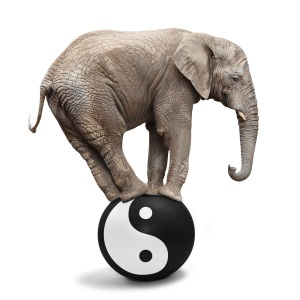 Big Elephant balancing on a sphere with Ying yang symbol of harmony and balance. Alternative medicine theme.