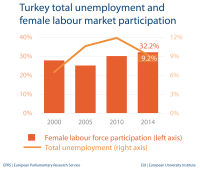 Unemployment and female labour market - Turkey