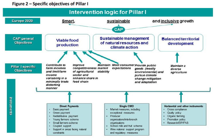 Specific objectives of Pillar I