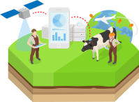 Precision agriculture: digitalisation