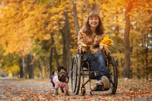 the smiling cheerful girl on a wheelchair with the dog in autumn road