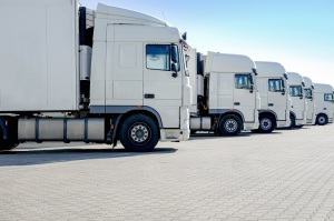 LKW-Spedition, mehrere weiße Laster stehen nebeneinander