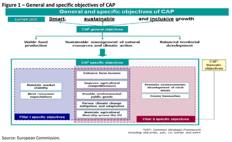 General and specific objectives of CAP