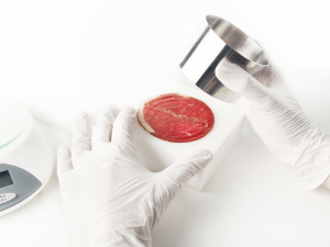 What if all our meat were grown in a lab?
