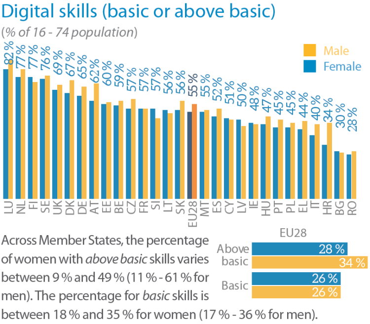 Digital skills (basic or above basic)