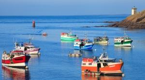 Bateaux de pêche dans la port du Conquet, Bretagne