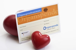 Organ donor card with two hearts