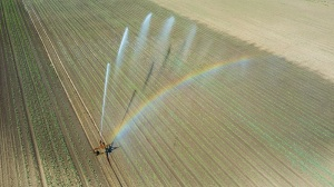 Irrigation equipment watering field. Aerial view.