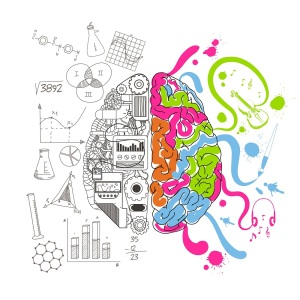 Analytical and creative brain