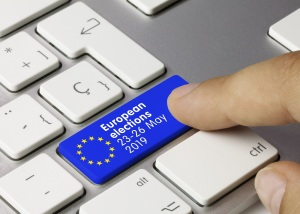 European elections: common rules and national provisions | European