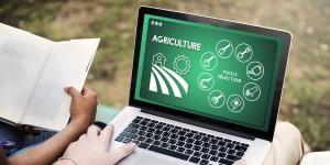 Agriculture Farm Crops Production Plants Concept
