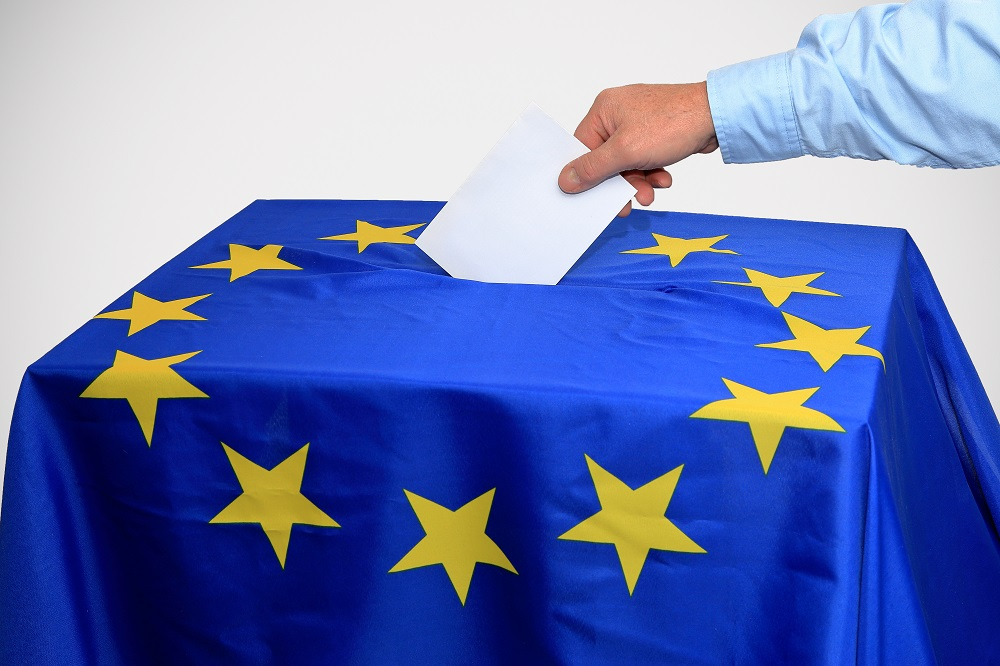 The European Union and E-Voting