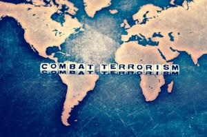 COMBAT TERRORISM on cubes