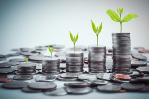 rows of coins for finance and business,Saving money and account finance bank business concept.tree growing on coin