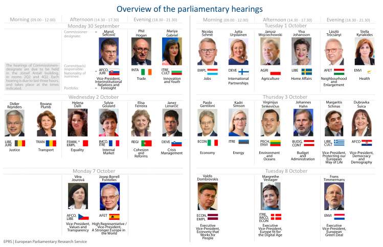 Overview of the parliamentary hearings