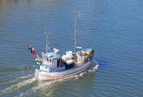 Support for fishermen affected by the eastern Baltic cod closure [EU Legislation inProgress]