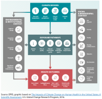Climate drivers, exposure pathways and health outcomes